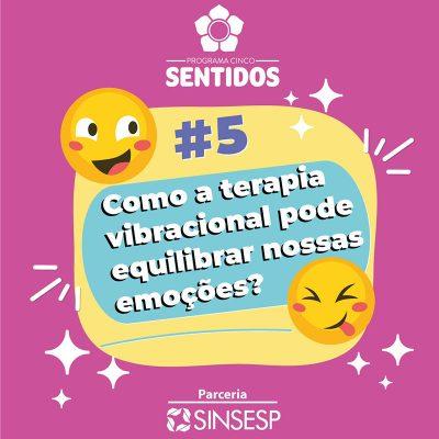 5-sentidos-5